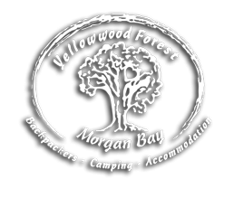 Yellowwood Forest Accommodation